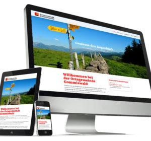 <span>Ortsgemeinde Gommiswald: Website</span><i>→</i>